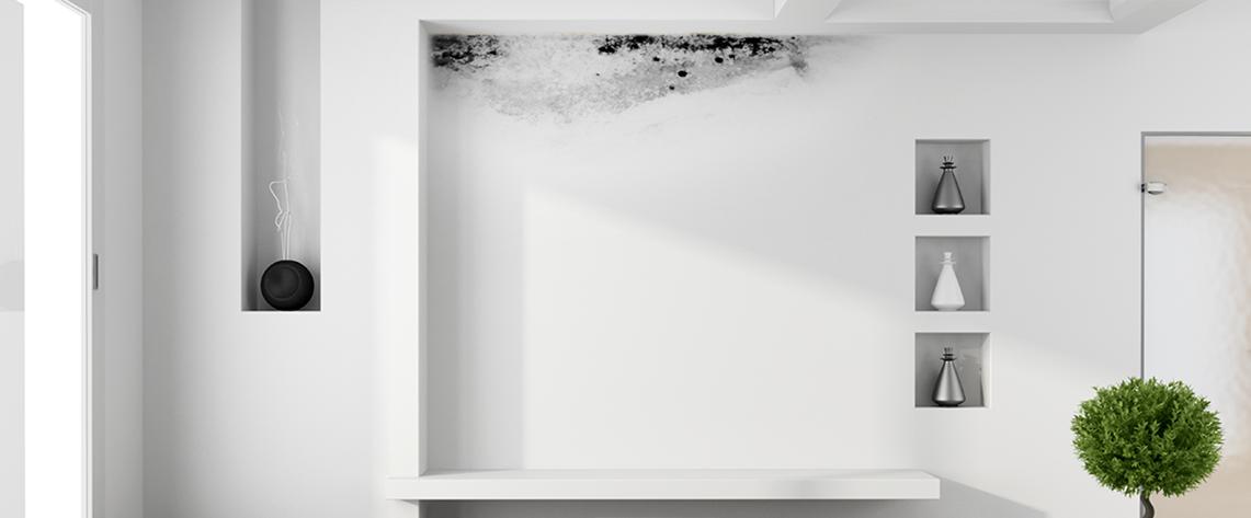 Skm italia elimina umidit di risalita e di condensa - Eliminare condensa in casa ...